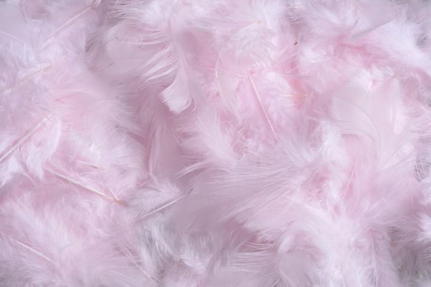 HM 0003_Lt Pink