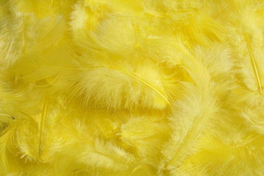 HM 0003_Yellow