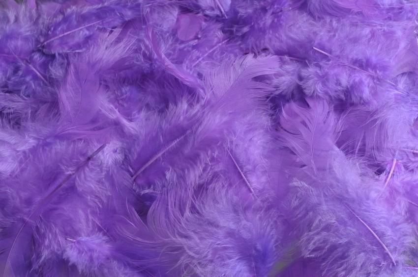 HM 0003_Lt Purple