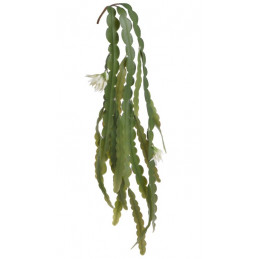 Epifilum kwitnące...80cm - sztuczna roślina