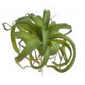 Sukulent 30x30cm - sztuczna roślina