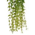 Roślina zwisająca 109 cm