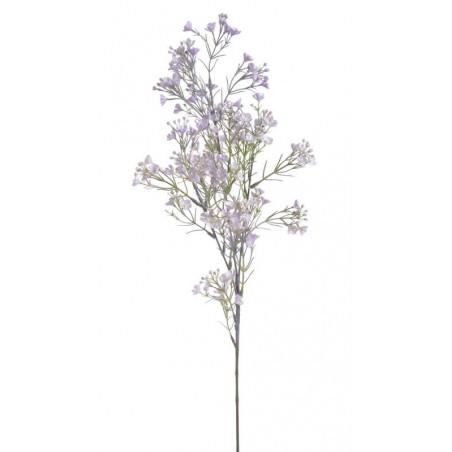 Rzeżucha łąkowa gałązka 76 cm