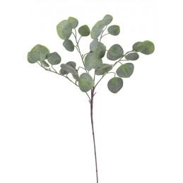 Eukaliptus populus 70 cm - sztuczna roślina