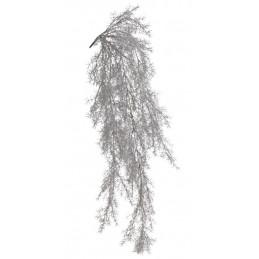 Asparagus zwis 90 cm