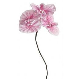 Kankan 95 cm- kwiat piankowy