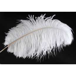 Pióra strusia 30-35 cm - paczka 3szt