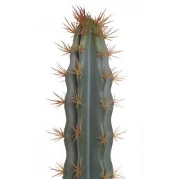 Kaktus (L87) 73x7x7 cm jak żywy