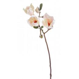 Gałązka magnolii 60 cm