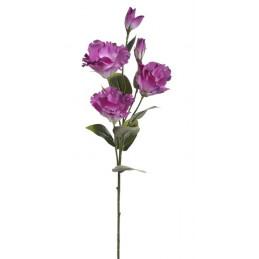 Eustoma 72 cm
