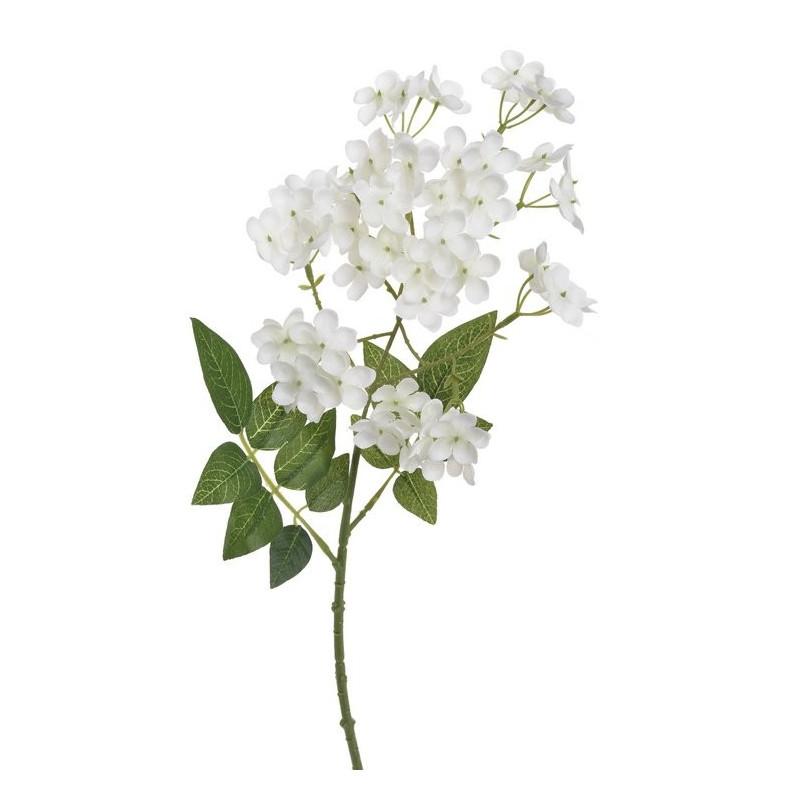 Hortensja drobna- gałązka 49 cm