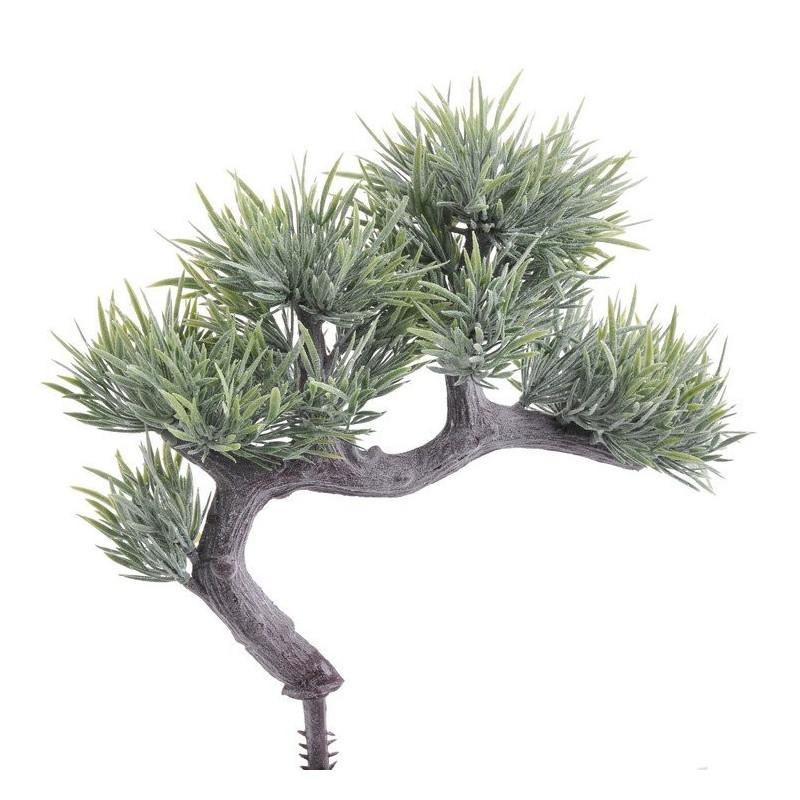 Bonsai B 20 cm