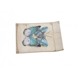 Motyl na klipie 6,5 cm, 2szt