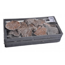 Sponge Mushroom frosted x 600 g - frosted white