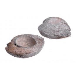 Coconut Halves frosted white 15-20 cm  -połówka orzecha kokosowego