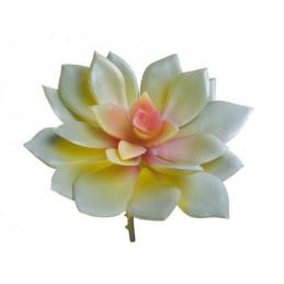 Sukulent 10x10 cm - sztuczna roślina 2 KOLORY