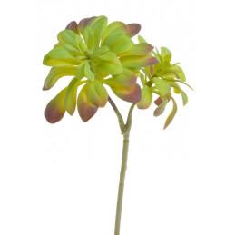 Sukulent 29x17 cm - sztuczna roślina 2 kolory