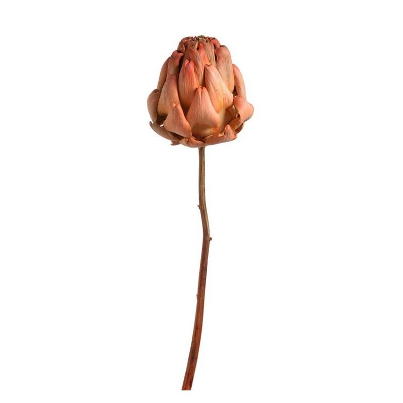 Artichoke bud orange 25-35 cm - suszona roślina