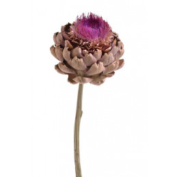 Artichoke flower small natural 35-45 cm - susz roślinny
