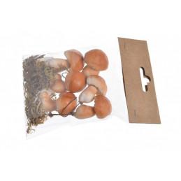 Grzyby sztuczne 4-5 cm 6szt-paczka