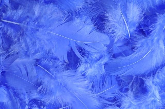 HM 0003_Lt Blue