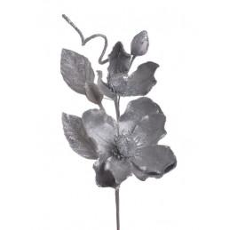 Pik brokacona magnolia x2..26cm