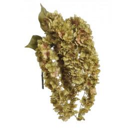 Hortensja wisząca x5 liść jesienny..82cm - sztuczna roślina