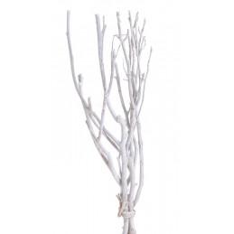 Gałęzie drzewa herbacianego W Extra 45 cm, 3szt/paczka