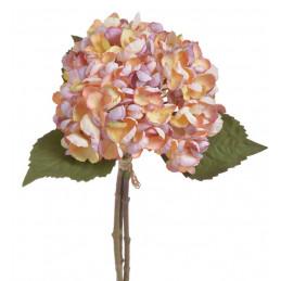 Hortensja x3, 33 cm -...