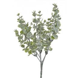 Eukaliptus mini x6, 34 cm -...
