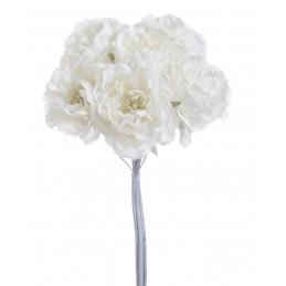 Bukiet róż koronkowych...