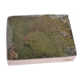 Flat moss 500g..48x28x10cm...