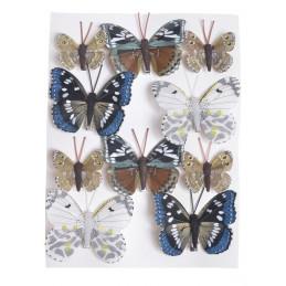 Motylki na klipie...