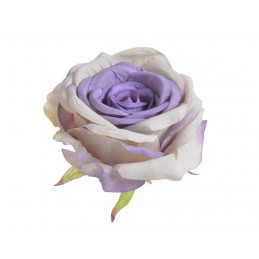 Główka róży...