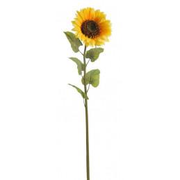 Słonecznik 140 cm