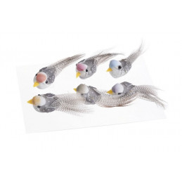 Ptaszki 4 cm na przylepcu 6 szt-kpl mix