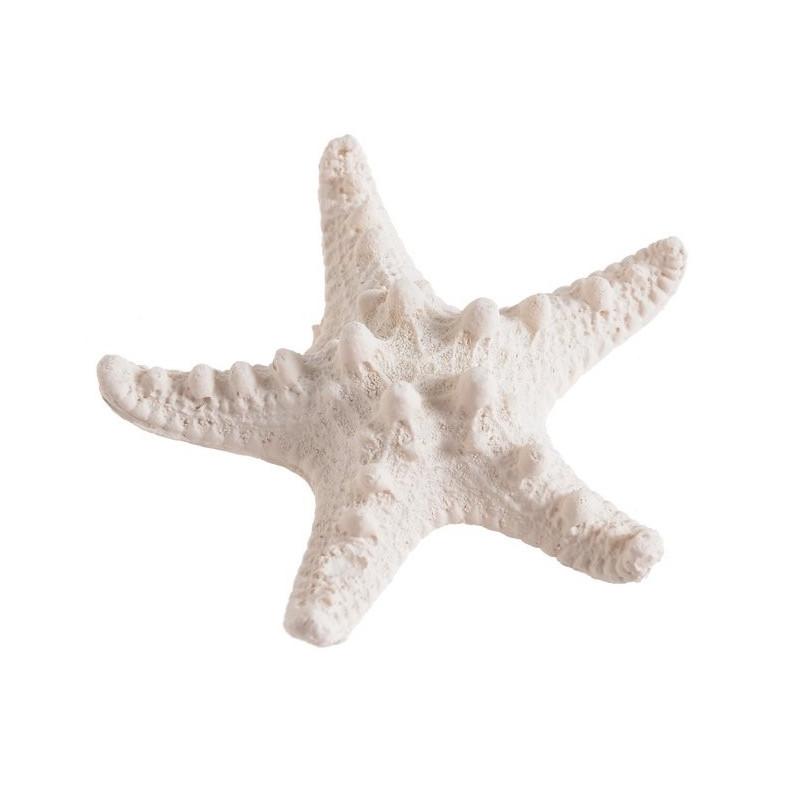 Rozgwiazda 7 x 7 x 2 cm