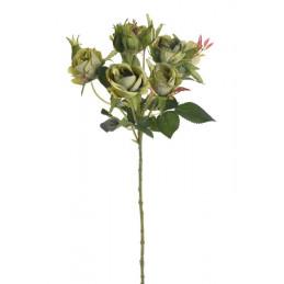 Gałązka róż 6+4 liść wiosna, 54 cm
