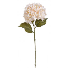 Hortensja duża x1,  H85 cm