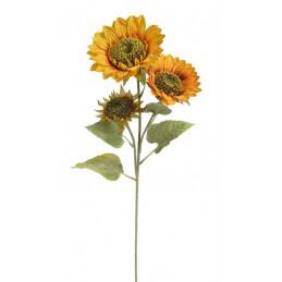 Słonecznik x3, 90 cm