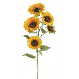 Słonecznik x5, 95 cm