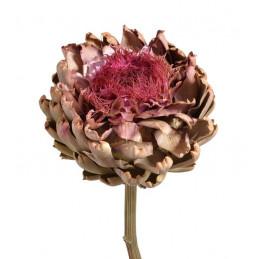 Artichoke flower large natural 25-35 cm - suszona roślina