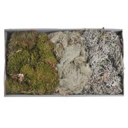 MECH - mixed moss 500gr 48x28x10 cm