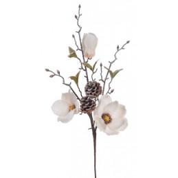 Gałązka magnolii ośnieżona..68 cm