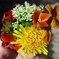 Gotowe zestawy bukietowe, bukiety mieszane, bukiety jednolite, wariacje kwiatowe