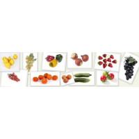 sztuczne warzywa i owoce
